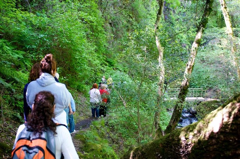 green-valley-falls-440