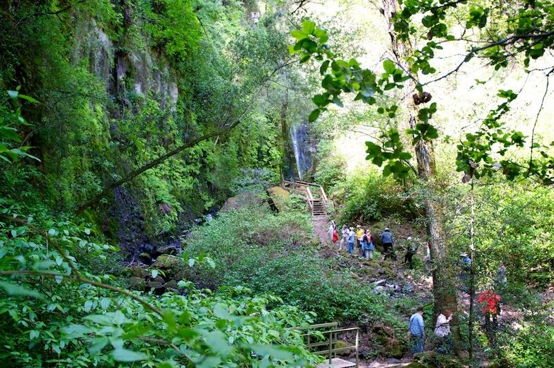 green-valley-falls-441