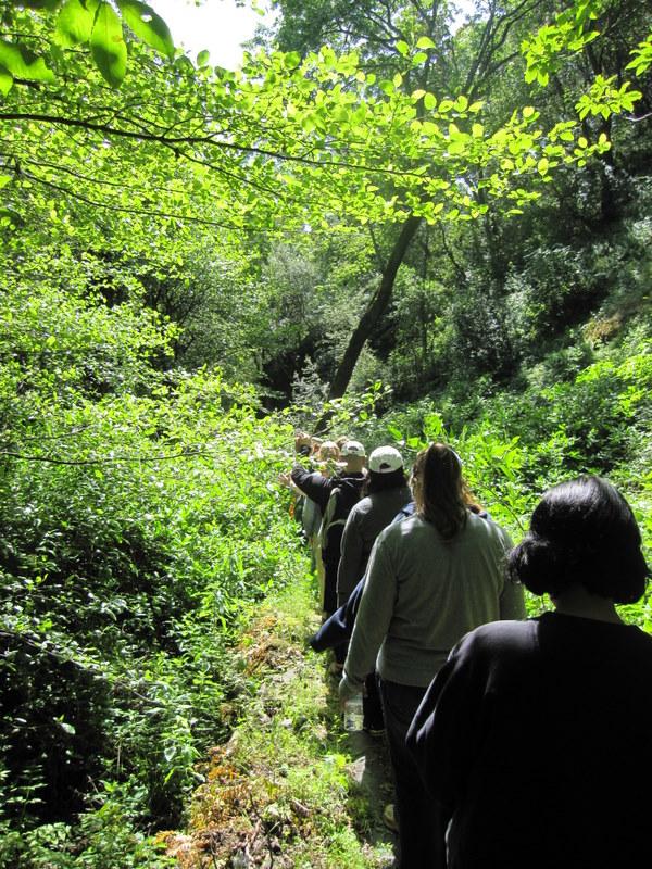 shc-green-valley-falls-5-7-11-051