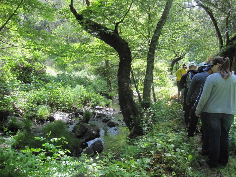 shc-green-valley-falls-5-7-11-052
