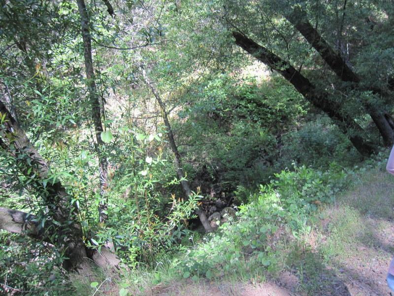 shc-green-valley-falls-5-7-11-059
