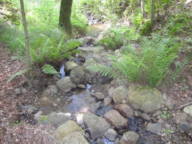shc-green-valley-falls-5-7-11-063