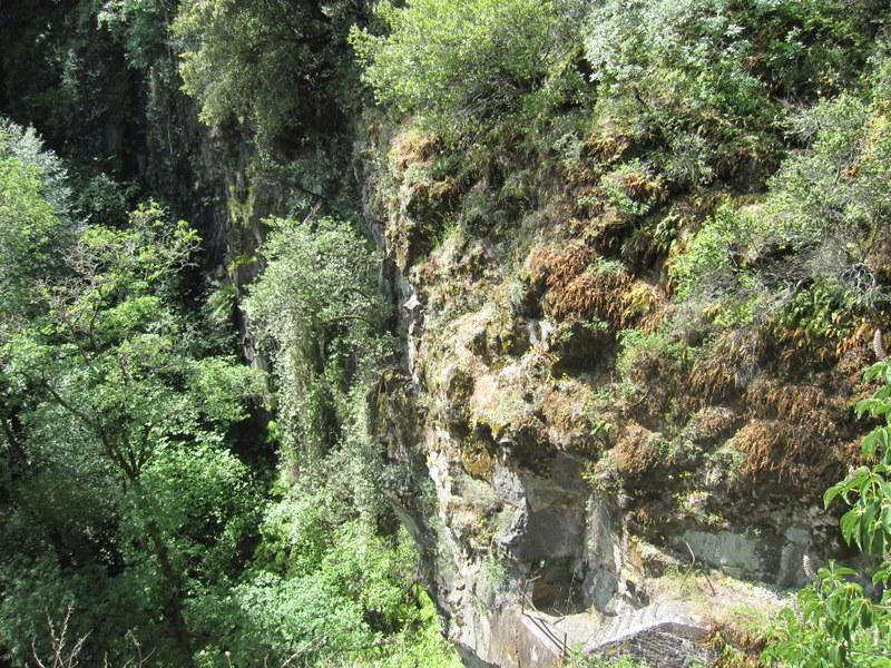 shc-green-valley-falls-5-7-11-067