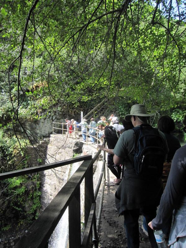 shc-green-valley-falls-5-7-11-074-1