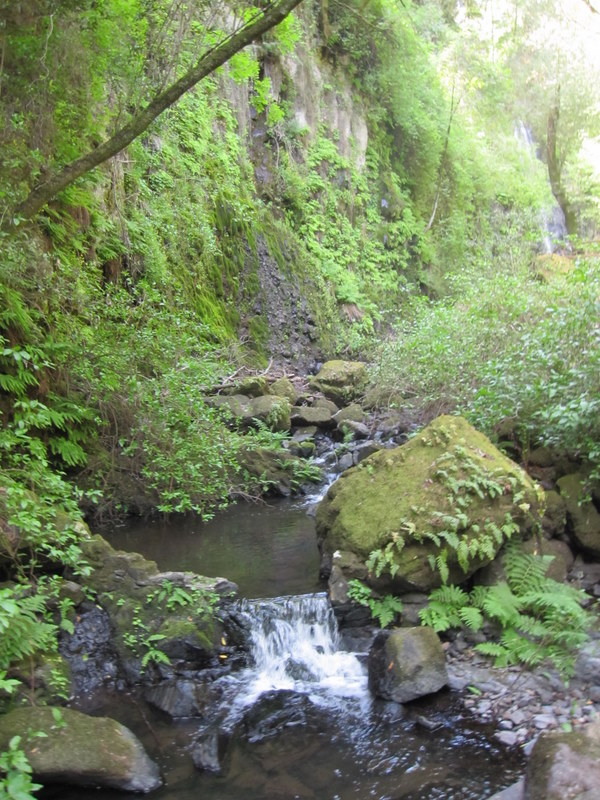 shc-green-valley-falls-5-7-11-083