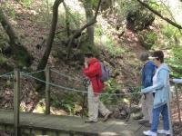 shc-green-valley-falls-5-7-11-061
