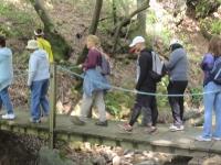 shc-green-valley-falls-5-7-11-062