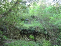 shc-green-valley-falls-5-7-11-080