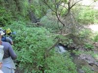 shc-green-valley-falls-5-7-11-081