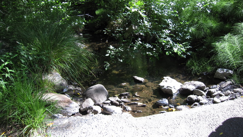 green-valley-falls-6-12-10-013