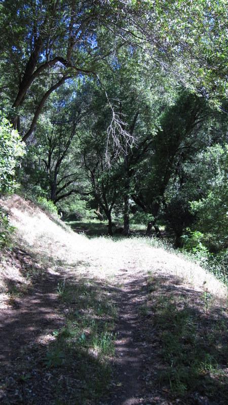 green-valley-falls-6-12-10-016