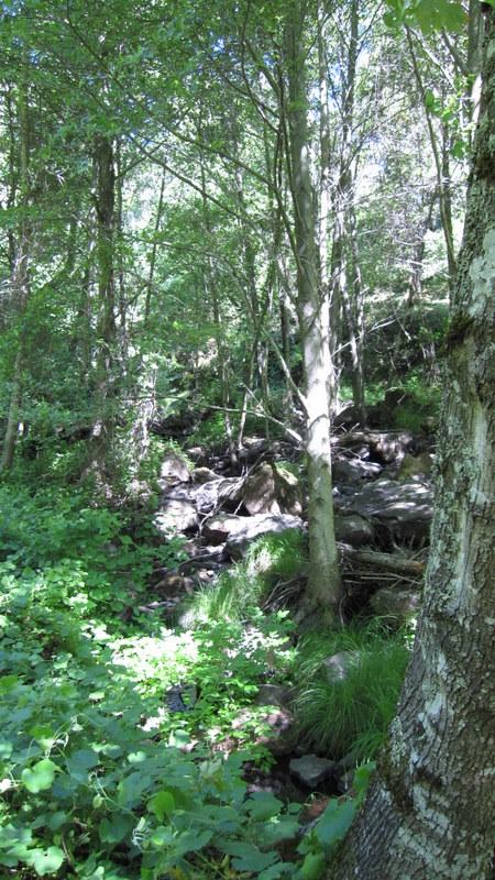 green-valley-falls-6-12-10-025
