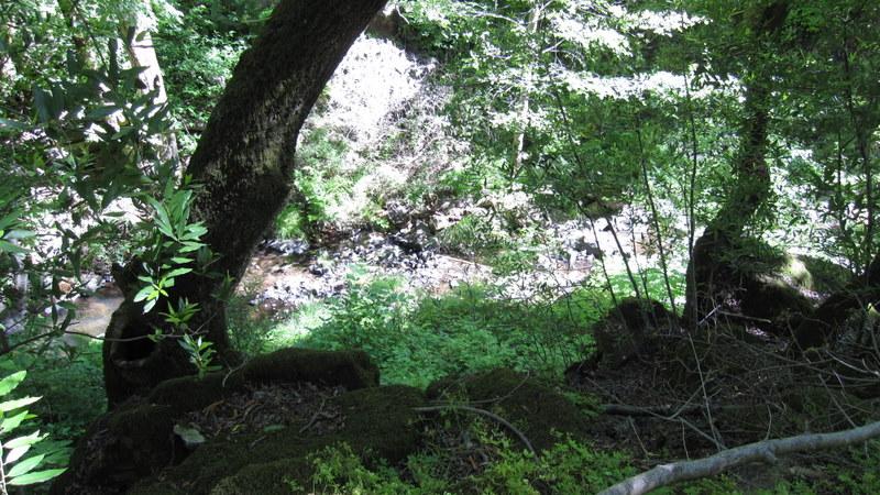 green-valley-falls-6-12-10-041