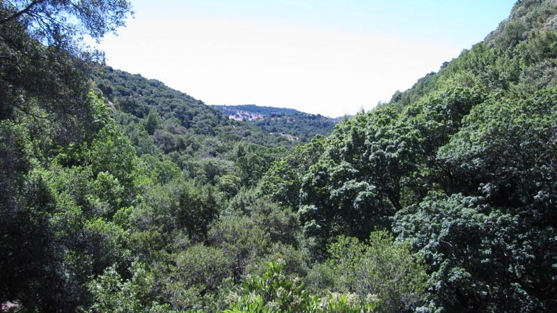 green-valley-falls-6-12-10-070