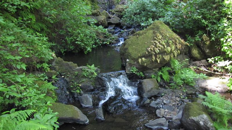 green-valley-falls-6-12-10-092