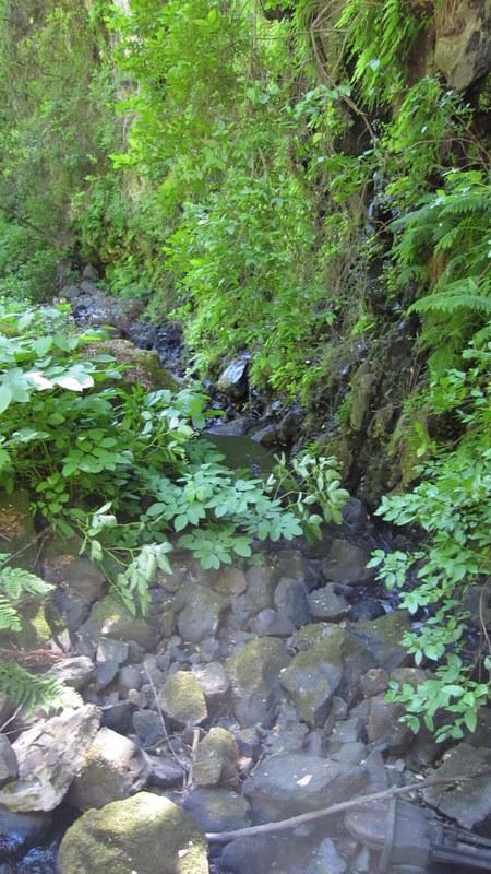 green-valley-falls-6-12-10-106