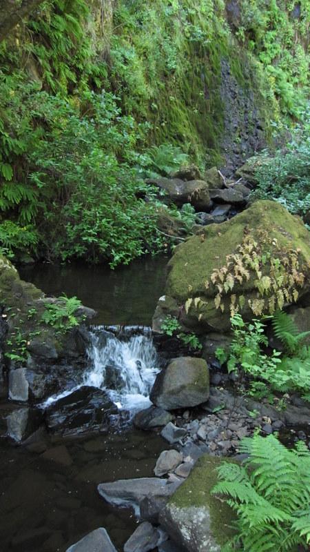 green-valley-falls-6-12-10-133