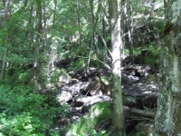 green-valley-falls-6-12-10-025