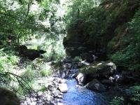 green-valley-falls-6-12-10-093