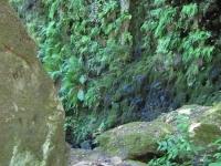 green-valley-falls-6-12-10-128