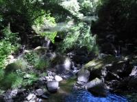 green-valley-falls-6-12-10-137