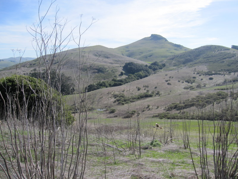 hiddenbrook-bay-ridge-trail-2-11-11-012