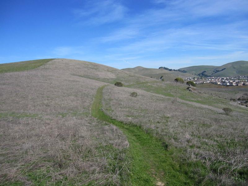 hiddenbrook-bay-ridge-trail-2-11-11-013