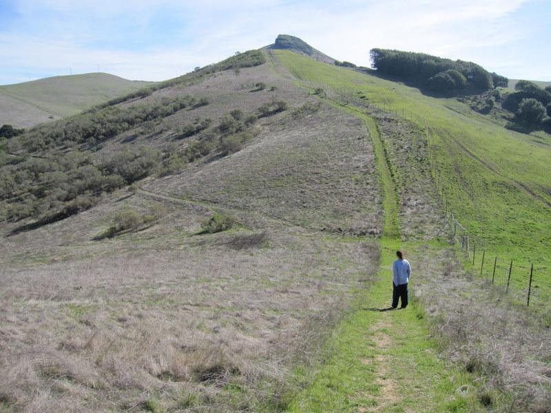 hiddenbrook-bay-ridge-trail-2-11-11-017