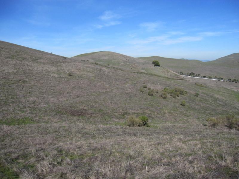 hiddenbrook-bay-ridge-trail-2-11-11-022