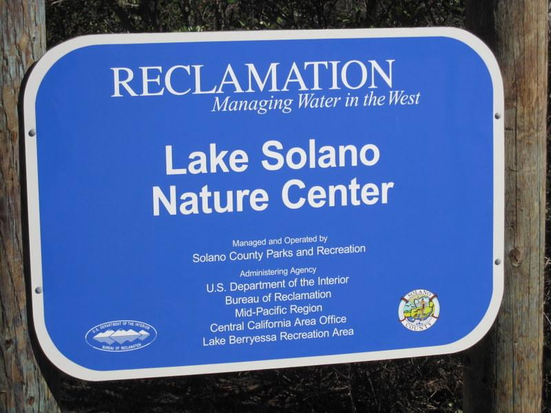 lake-solano-2-27-11-002