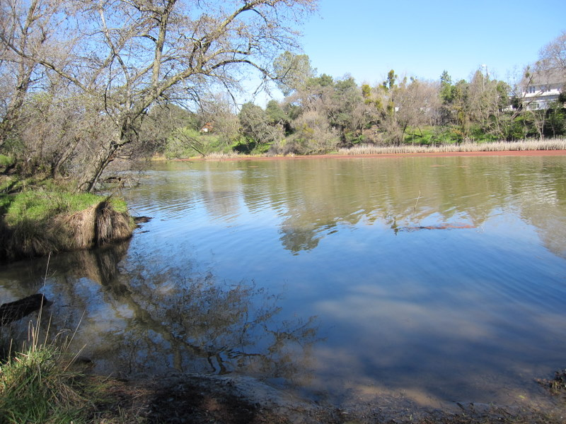 lake-solano-2-27-11-016