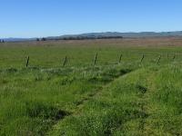 rush-ranch-3-13-10-020