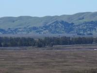 rush-ranch-3-13-10-036