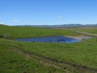 rush-ranch-3-13-10-037