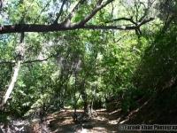 solano-hiking-354
